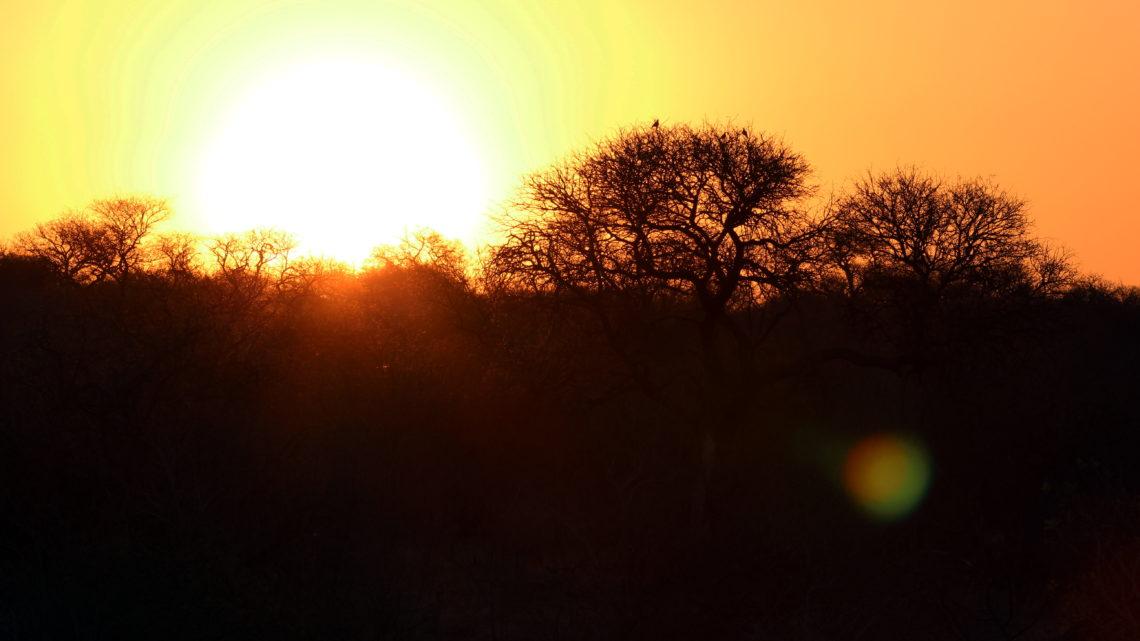 Road Trip: Mit dem Mietwagen durch Südafrika