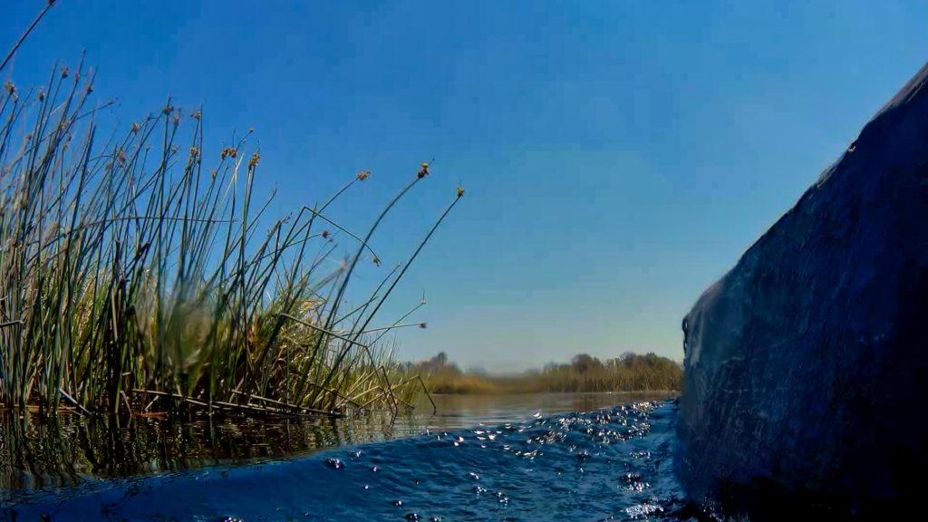 Im Mokoro durch das Okavango Delta