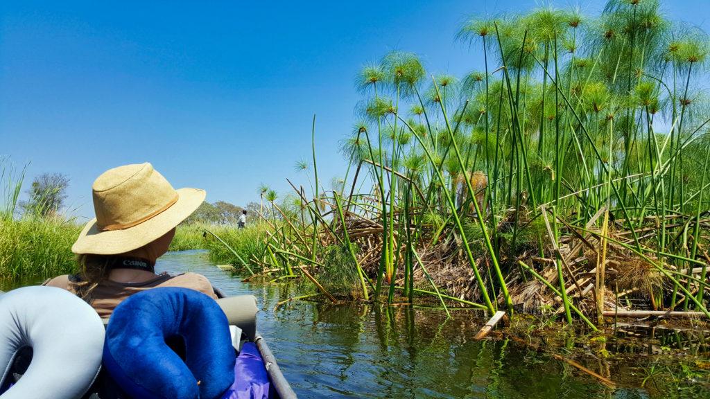 Mokoro Fahrt ins Okavango Delta