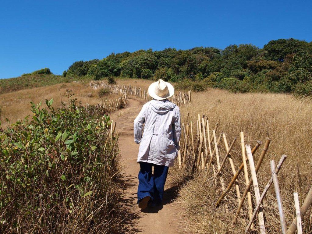 Guide auf dem Mae Pan Nature Trail